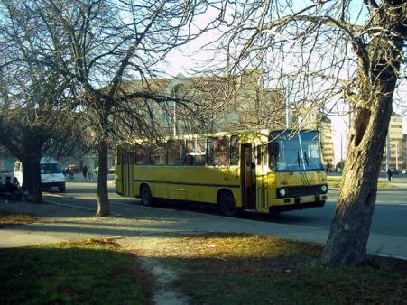 Linii de transport din Timisoara 6080a934b23